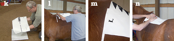 EQUImeasure saddle fit aid